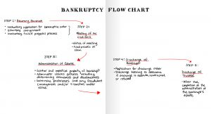bankrupcty-flowchart-foldout
